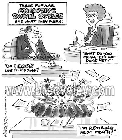 Executive swivel styles