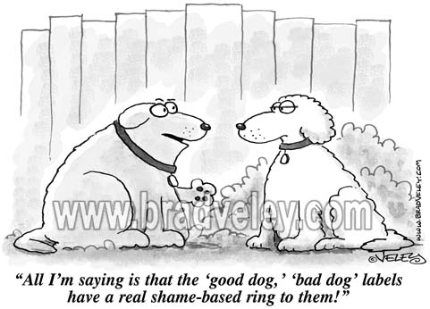 Good Dog/Bad Dog