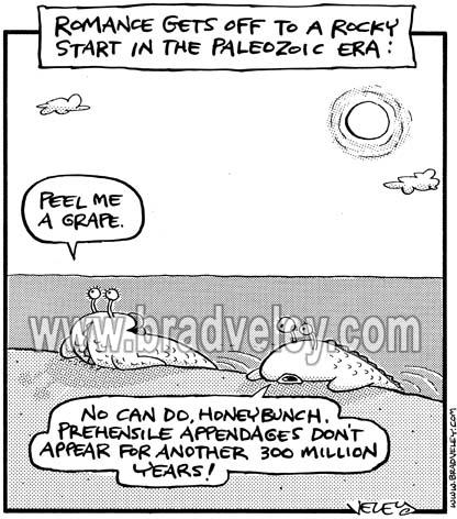 Paleozoic Romance Troubles