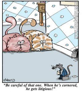 cat,rat,attorney,litigious