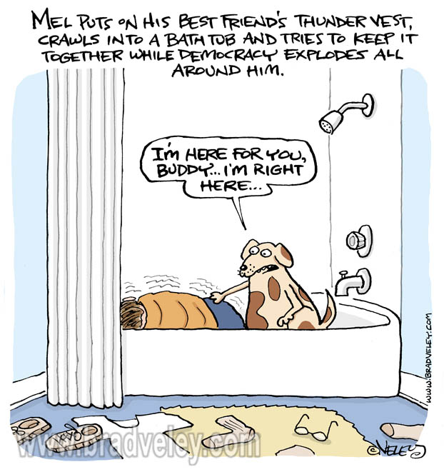 Thunder vest politics bathtub pet dog democracy