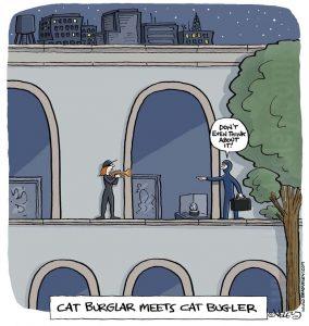 cat burglar meets cat bugler