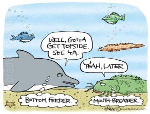 Bottom feeder, mouth breather