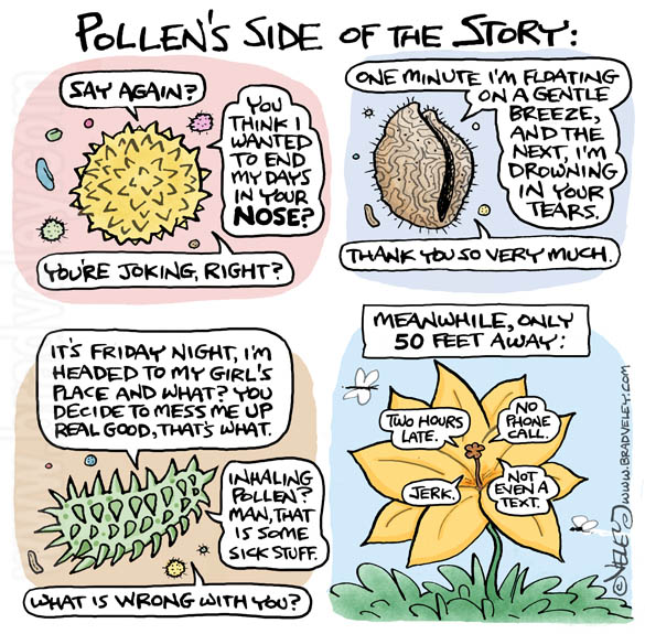 Pollen's Side of the Story
