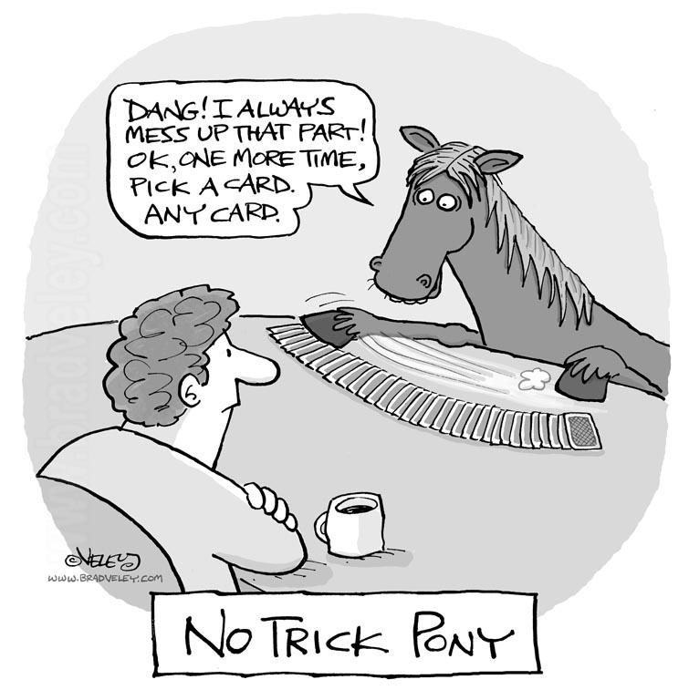 No Trick Pony