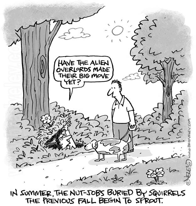 In summer, the nut-jobs buried by squirrels the previous fall begin to sprout.